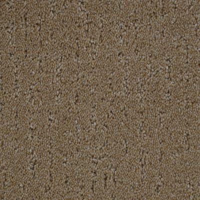Stainmaster Petprotect Stainmaster – Petprotect SIMPLE BEAUTY Dark Straw 1663-13742