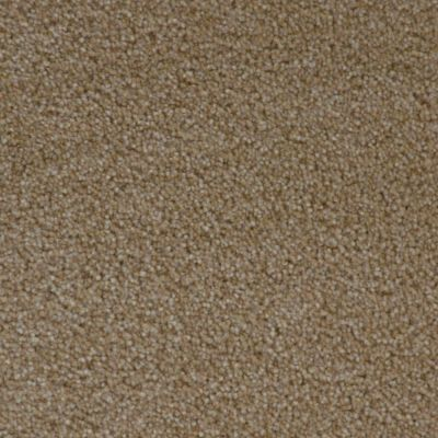 Stainmaster Petprotect Stainmaster – Petprotect SIMPLE ATTRACTION Dark Straw 3661-13742