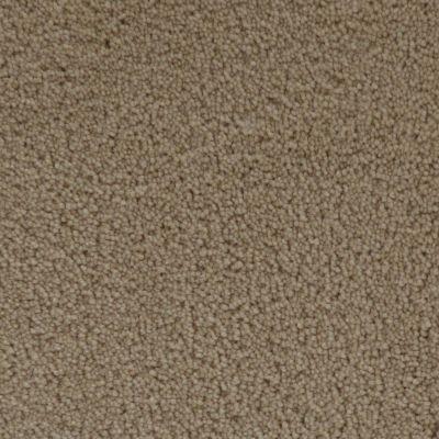 Stainmaster Petprotect Stainmaster – Petprotect SIMPLE ATTRACTION Gardenia Beige 3661-14252