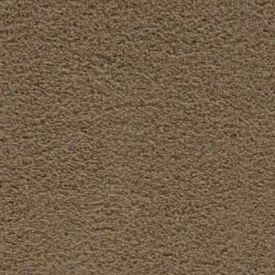 Stainmaster Petprotect Stainmaster – Petprotect SIMPLE ATTRACTION Bistre Grey 3661-74299