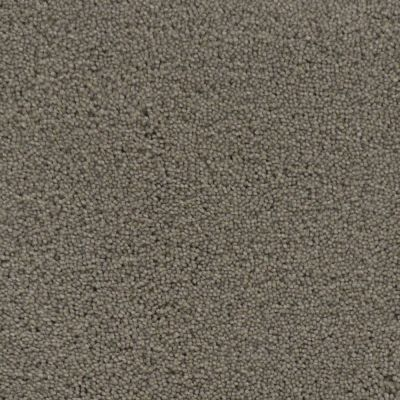 Stainmaster Petprotect Stainmaster – Petprotect SIMPLE ATTRACTION North American Grey 3661-89832