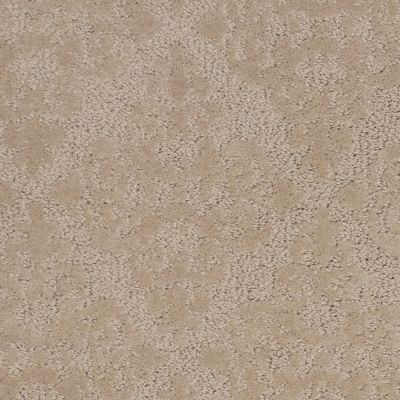 Stainmaster Petprotect Stainmaster – Petprotect HUSKY Tender Taupe A1263-14729