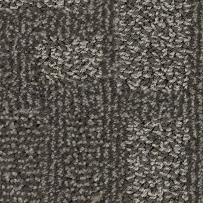 Stainmaster Petprotect Stainmaster – Petprotect HARRIER Dark Mineral Grey A1633-84221
