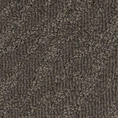 Stainmaster Petprotect Stainmaster – Petprotect PETIT BASSET Taboo Brown A1635-76833