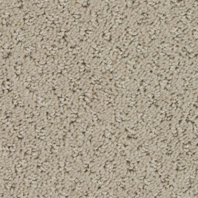 Stainmaster Petprotect Stainmaster – Petprotect SALUKI Tender Taupe A1691-14729