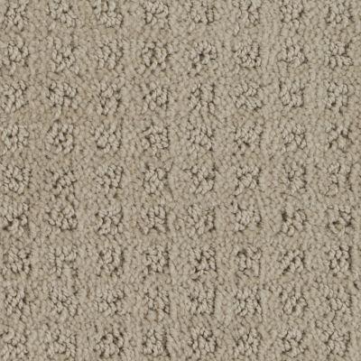 Stainmaster Petprotect Stainmaster – Petprotect BASENJI Pale Faces A1693-19513