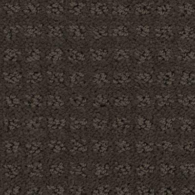 Stainmaster Petprotect Stainmaster – Petprotect BASENJI Taboo Brown A1693-76833