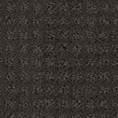 Stainmaster Petprotect Stainmaster – Petprotect BASENJI Dark Mineral Grey A1693-84221