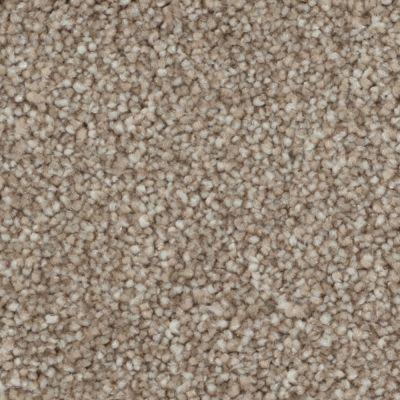 Tryesse Pro CALM RETREAT Arizona Sand A4481-11068