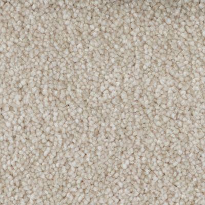 Tryesse Pro CALM HAVEN BEIGE CLAY A4485-19018