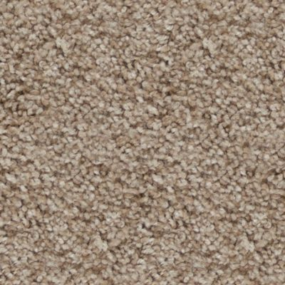 Stainmaster Petprotect Stainmaster – Petprotect CAVALIER KING SAND A4673-16970