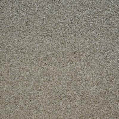Stainmaster Petprotect Stainmaster – Petprotect BICHON London Beige A4681-17061