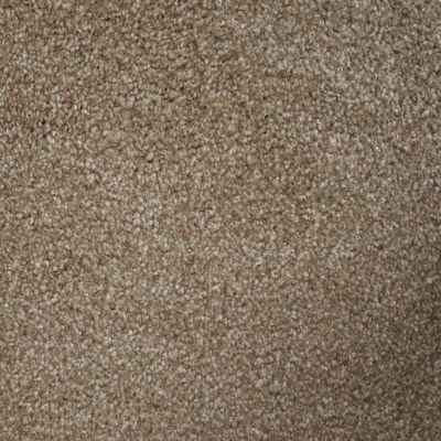 Stainmaster Petprotect Stainmaster – Petprotect BICHON Light Chocolate A4681-17608