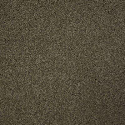 Stainmaster Petprotect Stainmaster – Petprotect BICHON Burnt Leaf A4681-18926