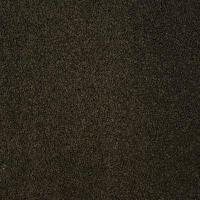 Stainmaster Petprotect Stainmaster – Petprotect BICHON Dark Mineral Grey A4681-84221