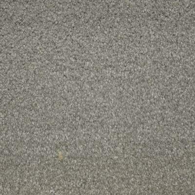 Stainmaster Petprotect Stainmaster – Petprotect BICHON Arrowhead A4681-84657