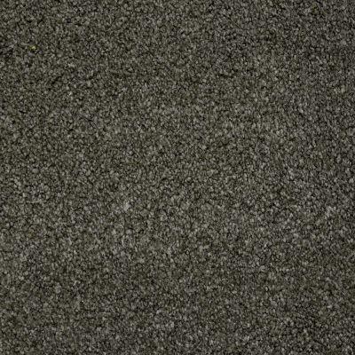 Stainmaster Petprotect Stainmaster – Petprotect BICHON Benedictine Grey A4681-86840