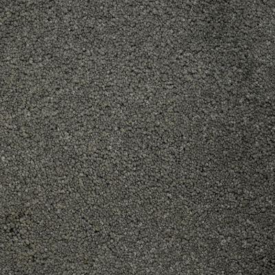 Stainmaster Petprotect Stainmaster – Petprotect BICHON Metallic Grey A4681-89056