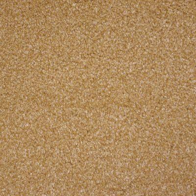 Stainmaster Petprotect Stainmaster – Petprotect COLLIE Dark Straw A4683-13742