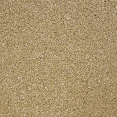 Stainmaster Petprotect Stainmaster – Petprotect COLLIE Provincial White A4683-14253