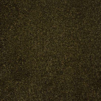 Stainmaster Petprotect Stainmaster – Petprotect TERRIER Taboo Brown A4685-76833