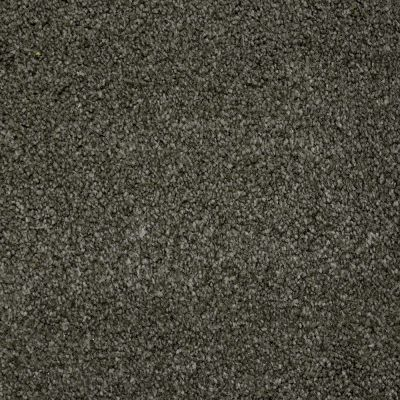 Stainmaster Petprotect Stainmaster – Petprotect TERRIER Benedictine Grey A4685-86840