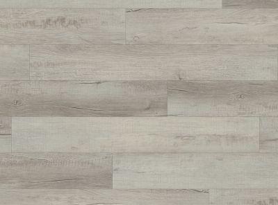 COREtec Pro Plus Chesapeake Oak VV017-01001