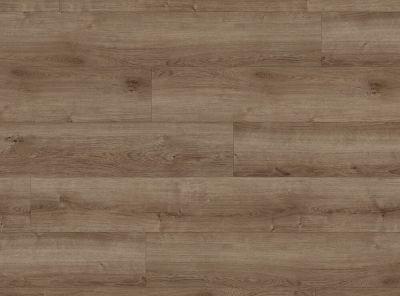 COREtec Pro Plus Copano Oak VV017-01003