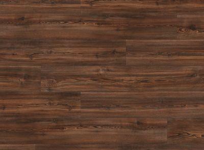 COREtec Pro Plus Alamitos Pine VV017-01006