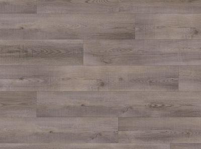COREtec Pro Plus Laguna Oak VV017-01016