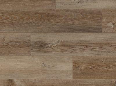 COREtec Pro Plus Enhanced Elster Oak VV100-02008