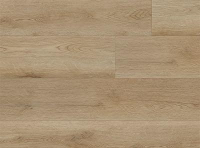 COREtec Plus XL Medora Oak VV034-00619
