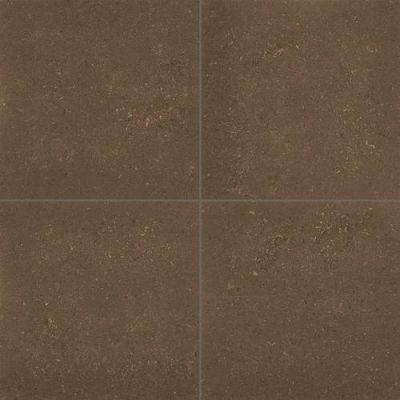 Daltile Anchorage Brown AC0912241L