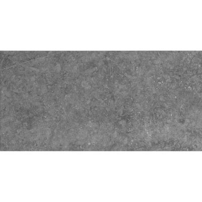 Daltile Diplomacy Light Grey Gray/Black DP0112241P