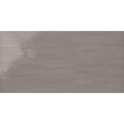 Daltile Formula Axiom Silver Gray/Black FM9412241L