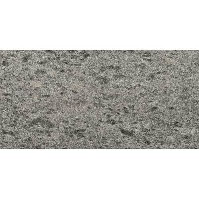 Daltile Granite Collection Silver Pearl (Flamed) G25912241M