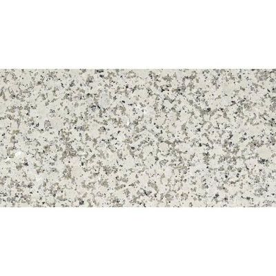 Daltile Granite Collection Chloe White (Flamed) G33912241M
