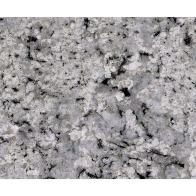 Daltile Granite  Natural Stone Slab Palladium White G841SLAB11/41L