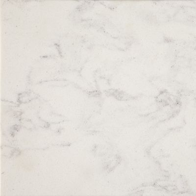 Daltile Nature Flecks Diamond Chip NQ54SLAB11/4X1L