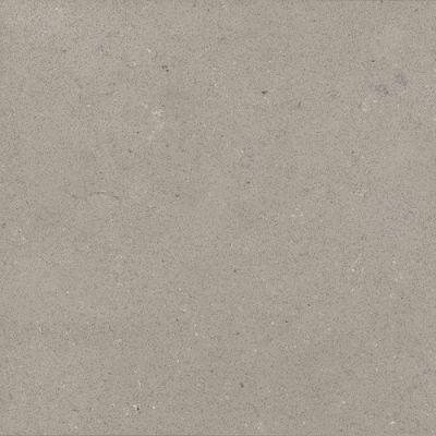 Daltile Nature Flecks Ash Grey NQ69SLAB3/4X1L