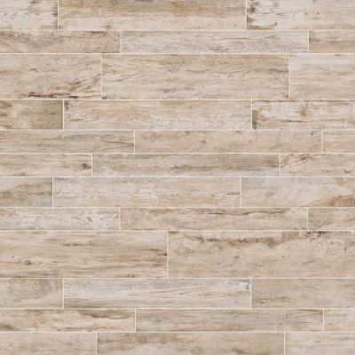 Daltile Season Wood Winter Spruce SW0224481P