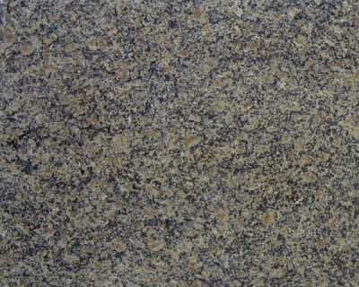 Daltile Granite  Natural Stone Slab Giallo Portofino G207SLAB11/41L