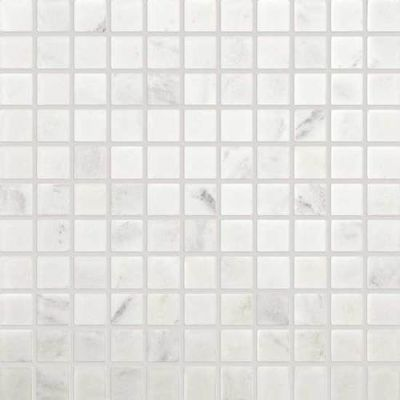 Daltile Marble Collection First Snow Elegance 1 X 1 Mosaic Tumbled White M19011MSTS1P
