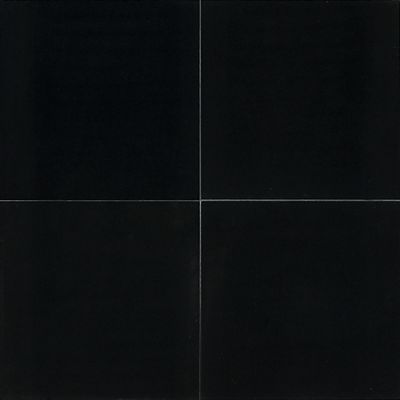 Daltile Marble Collection Midnight Ice (Polished) M19212241L