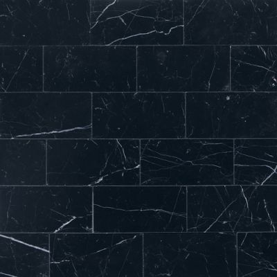 Daltile Marble Collection Nouveau Nero (polished And Honed) Gray/Black M312361L