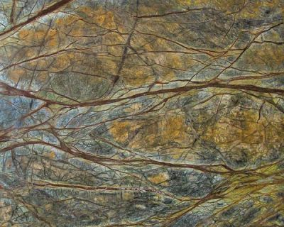 Daltile Marble Collection Rainforest Green (polished) Green M543SLAB3/41L