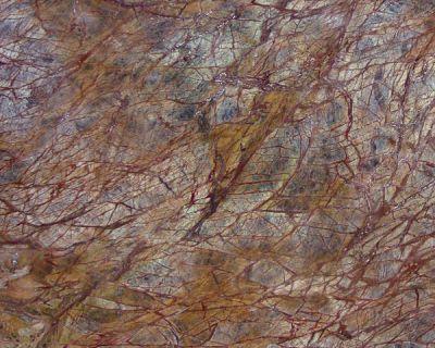 Daltile Marble Collection Rainforest Brown (Polished) M544SLAB3/41L