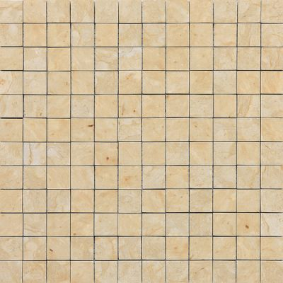 Daltile Marble Collection Champagne Gold (honed) Gold/Yellow M76011MS1U