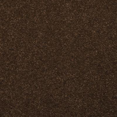Dixie Home Spellbinding Marsh Brown 531477506