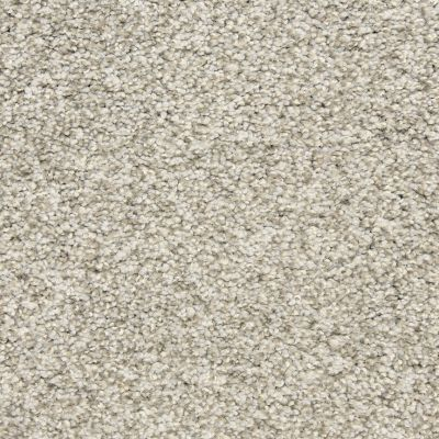 Dixie Home Marinette Titanium D01283120